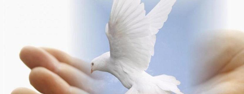 Михайло Паночко † Місія Святого Духа